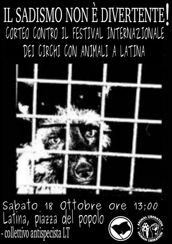 circo_latina